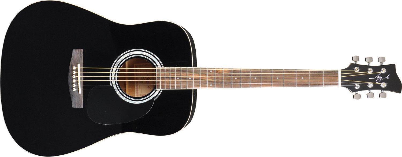 Jay Turser JJ45 Guitar